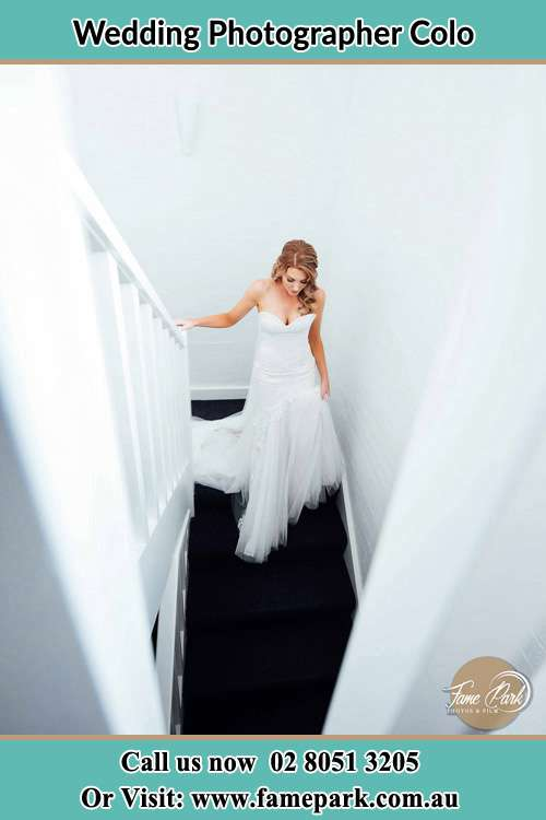 Photo of the Bride going down the stair Colo NSW 2756