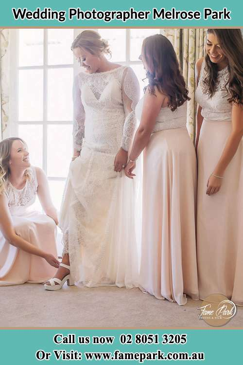 Photo of the Bride and the bridesmaids Melrose Park NSW 2114