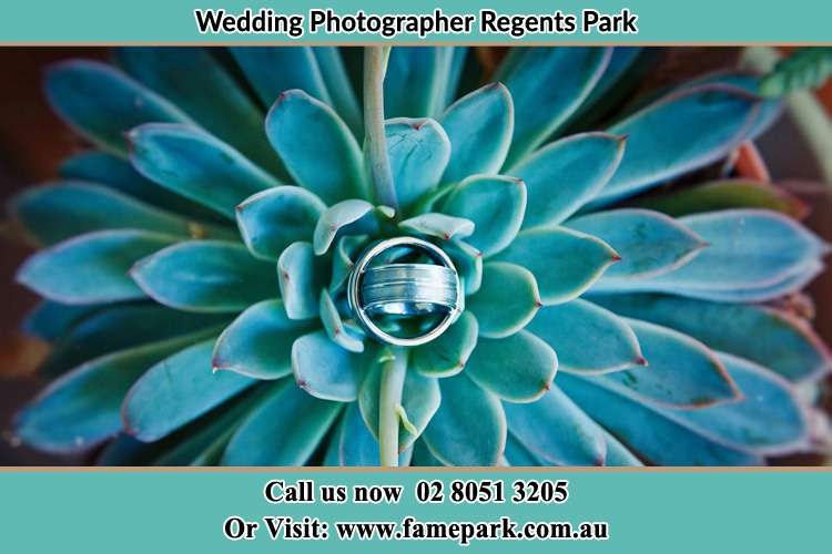 Photo of the wedding ring design at the top of the plant Regents Park NSW 2143